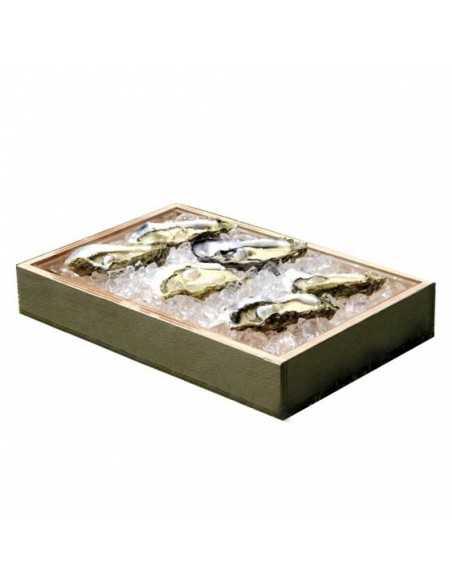 Caja de marisco madera y metacrilato