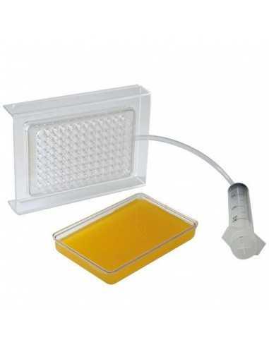Caja caviar desmontable