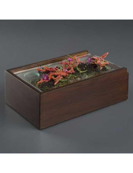 Caja de madera para efecto bosque