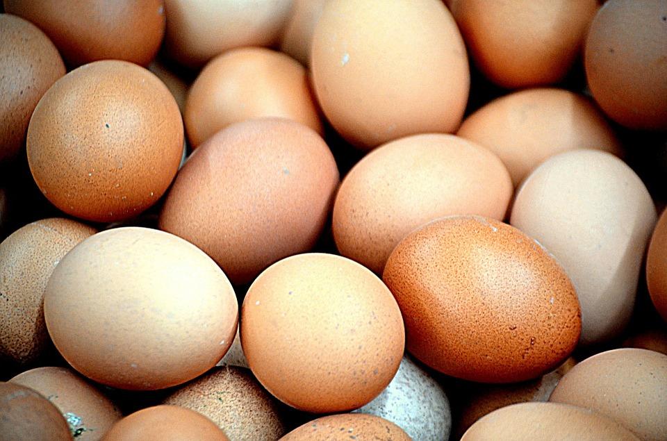 Huevos, transportadores de salmonella