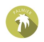 Eco palmera